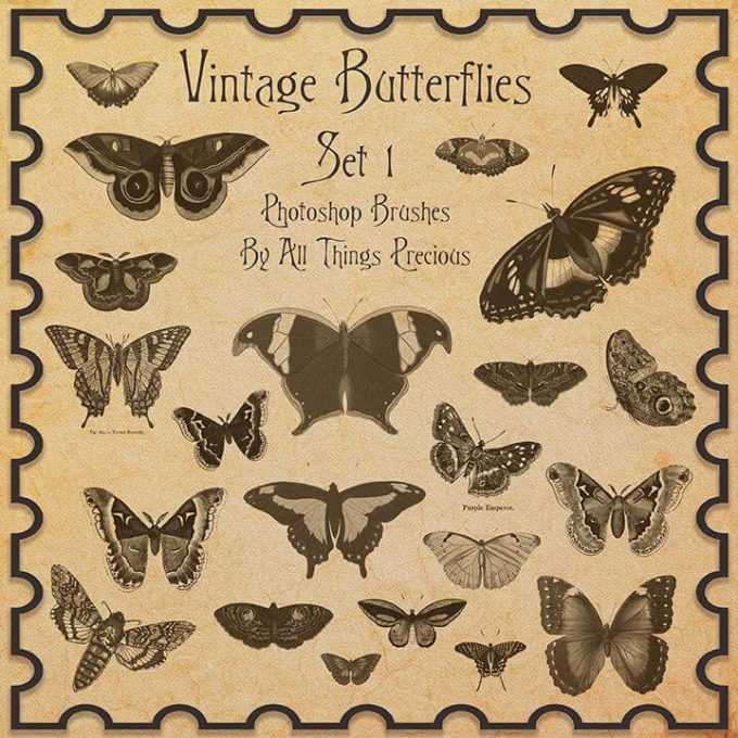 フォトショップ ブラシ Photoshop Butterfly Brush 無料 イラスト 蝶 Vintage Butterflies SET 1 Brushes