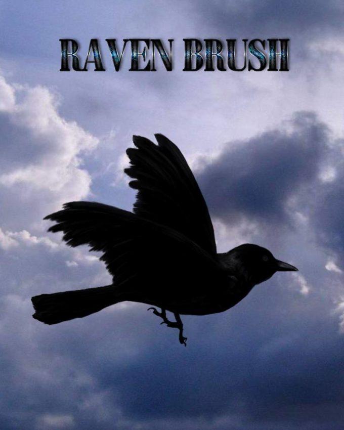 フォトショップ ブラシ Photoshop Raven Brush 無料 イラスト 鳥 バード カラス レイバン Raven Brush