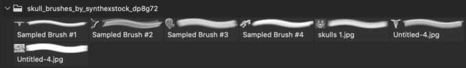 フォトショップ ブラシ Photoshop Skeleton Brush 無料 イラスト スカル 骸骨 ガイコツ スケルトン Skull brushes