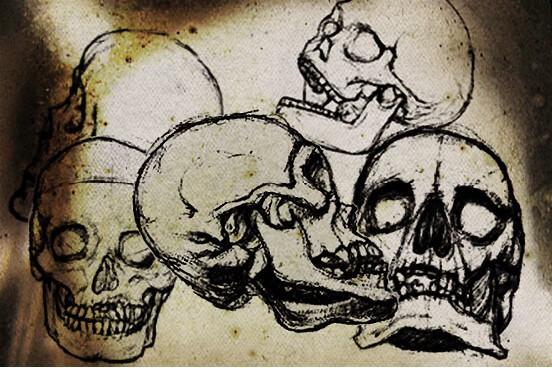 フォトショップ ブラシ Photoshop Skeleton Brush 無料 イラスト スカル 骸骨 ガイコツ スケルトン Hand Drawn Skull Brushes
