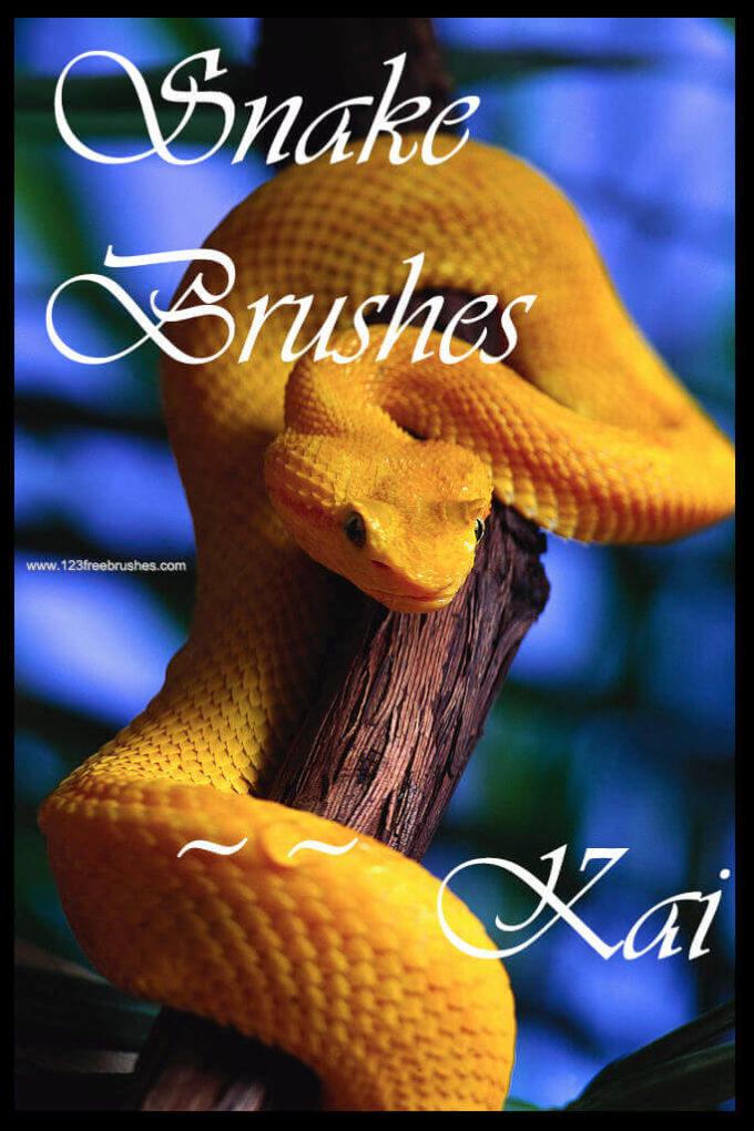 フォトショップ ブラシ Photoshop Snake Brush 無料 イラスト 蛇 ヘビ へび スネーク Snake