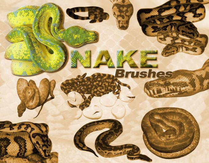 フォトショップ ブラシ Photoshop Snake Brush 無料 イラスト 蛇 ヘビ へび スネーク snakes