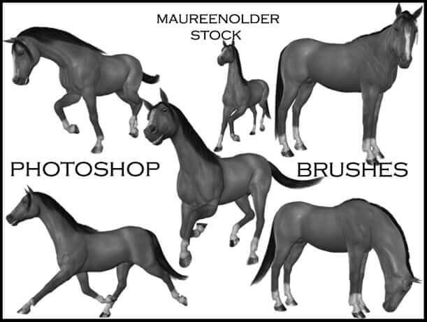 フォトショップ ブラシ Photoshop Horse Brush 無料 イラスト 馬 ホース STOCK PHOTOSHOP BRUSHES horse