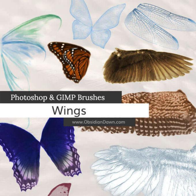 フォトショップ ブラシ Photoshop Feather Brush 無料 イラスト 羽 Wings Photoshop and GIMP Brushes