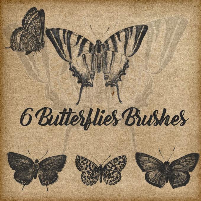 フォトショップ ブラシ Photoshop Butterfly Brush 無料 イラスト 蝶 バタフライ 6 Butterflies Brushes