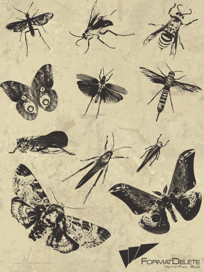 フォトショップ ブラシ Photoshop Bug Insect Brush 無料 イラスト 虫 ムシ 昆虫 Bug Brushes