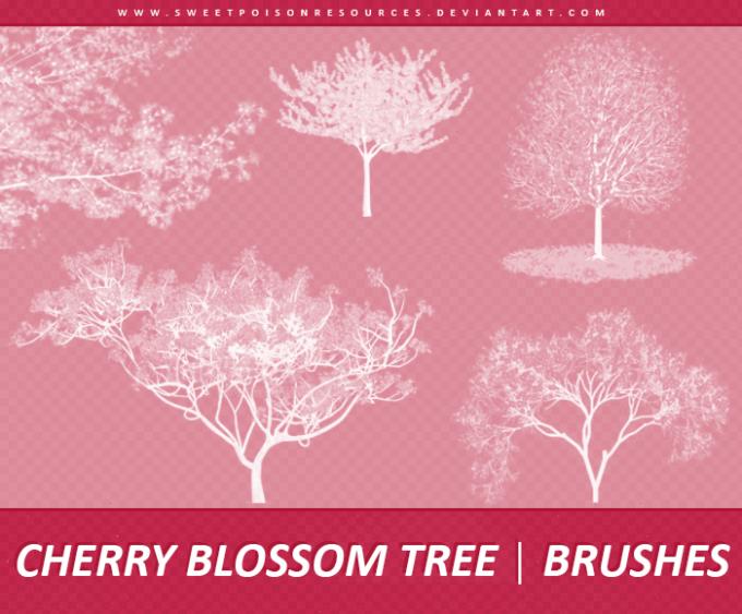フォトショップ ブラシ Photoshop Cherry Blossoms Brush 無料 イラスト 桜 サクラ チェリーブロッサムCherry Blossom Tree | Brushes