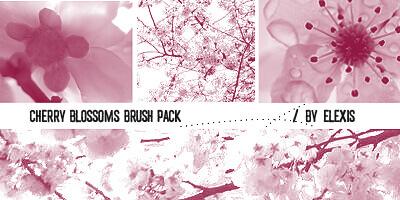 フォトショップ ブラシ Photoshop Cherry Blossoms Brush 無料 イラスト 桜 サクラ チェリーブロッサム Cherry Blossoms Brush Pack