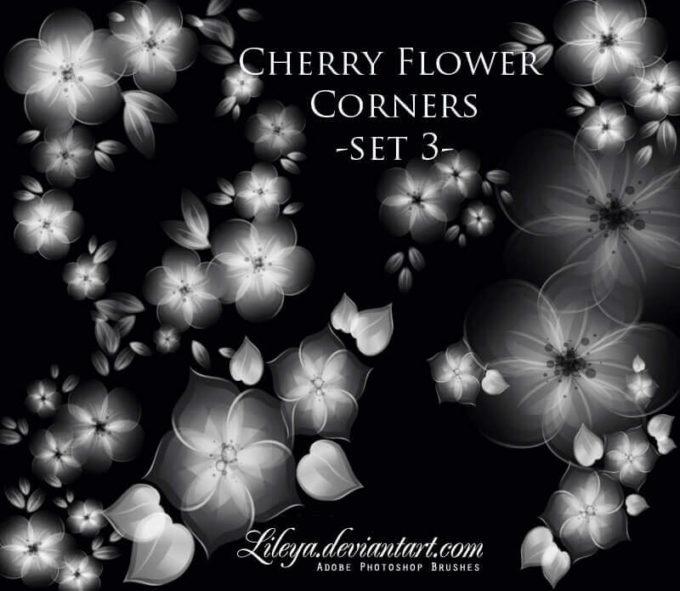 フォトショップ ブラシ Photoshop Cherry Blossoms Brush 無料 イラスト 桜 サクラ チェリーブロッサム Cherry Flower corners