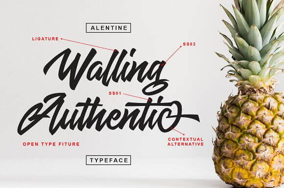 Free Font Design 無料 フリー フォント 追加 デザイン 筆記体 Alentine Script Font