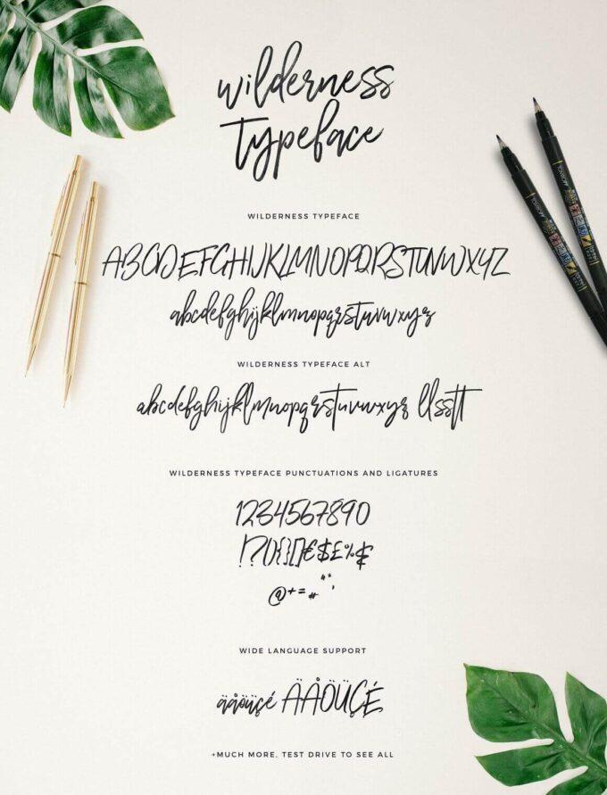 Free Font Design 無料 フリー フォント 追加 デザイン Wilderness Brush Font