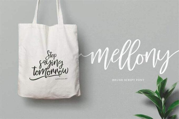 Free Font Design 無料 フリー フォント 追加 デザイン 筆記体 Mellony Brush Font