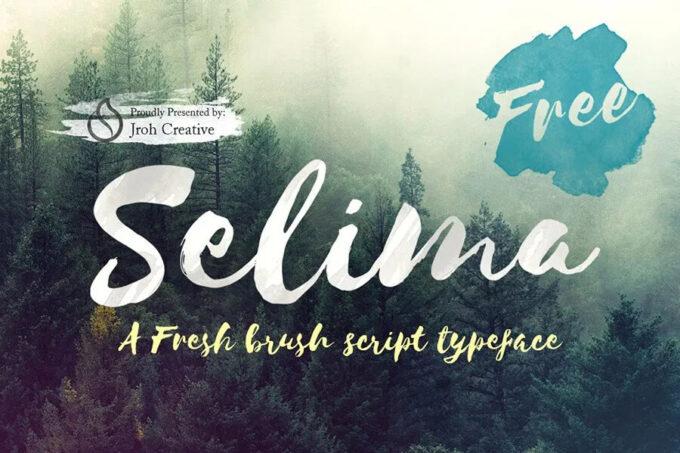 Free Font Design 無料 フリー フォント 追加 デザイン 筆記体 selima