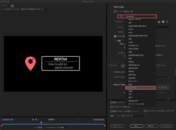 Adobe Premiere Pro Video format ビデオ 形式 フォーマット Quick Time