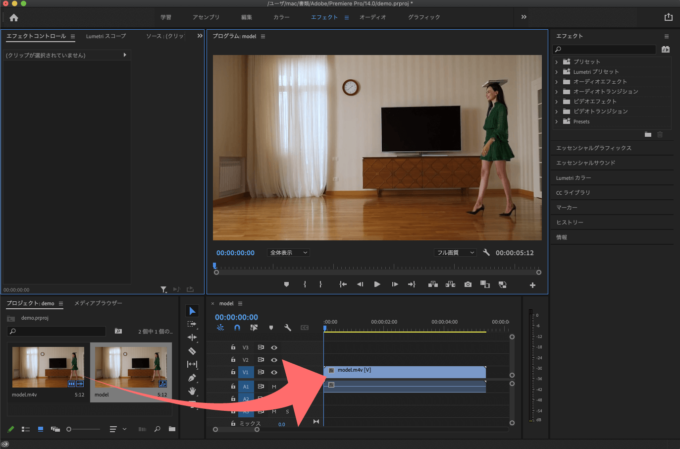 Adobe Premiere Pro フッテージ インポート 素材 読み込み