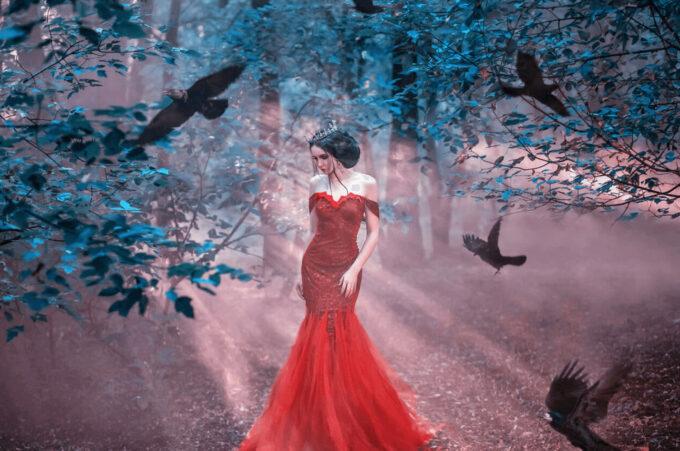 Photoshop Free Pigeon Overlay Texture Bokeh フォトショップ オーバーレイ テクスチャー 無料 フリー 鳩 ハト Fairytale