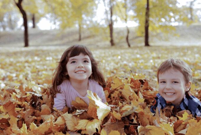 Photoshop Free Fallen leaves Overlay Texture フォトショップ オーバーレイ テクスチャー 無料 フリー 落ち葉 葉っぱ 枯れ葉 Leaf-strewn