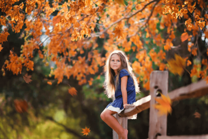 Photoshop Free Fallen leaves Overlay Texture フォトショップ オーバーレイ テクスチャー 無料 フリー 落ち葉 葉っぱ 枯れ葉 Orange Tint