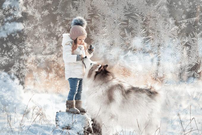 Photoshop Free Snowflake Overlay Texture Bokeh フォトショップ オーバーレイ テクスチャー 無料 フリー スノー 雪 結晶 クリスマス Snowy Pattern
