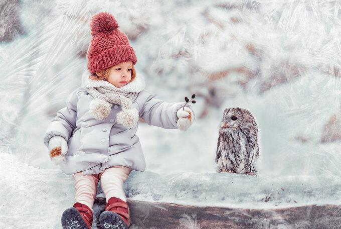 Photoshop Free Snowflake Overlay Texture Bokeh フォトショップ オーバーレイ テクスチャー 無料 フリー スノー 雪 結晶 クリスマス White Kingdom