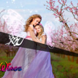 Photoshop Free Fairy Wing Overlay Texture フォトショップ オーバーレイ テクスチャー 無料 フリー 天使 羽 フェアリー ウィング