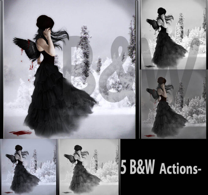 Adobe Photoshop Free Action Material フリー アクション 素材 モノクロ 白黒 Black and White ps actions