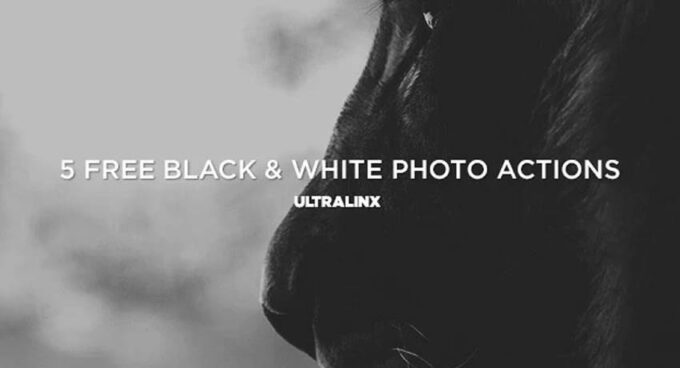 Adobe Photoshop Free Action Material フリー アクション 素材 モノクロ 白黒 5 FREE BLACK & WHITE PHOTO ACTIONS FROM ULTRALINX