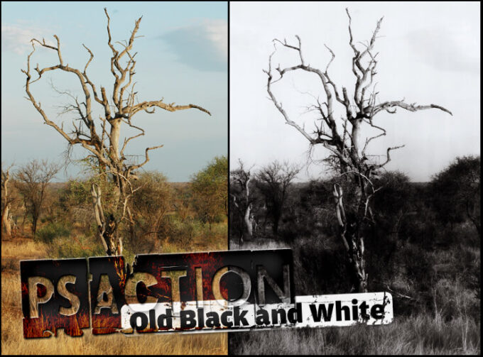 Adobe Photoshop Free Action Material フリー アクション 素材 モノクロ 白黒 Old Black and White