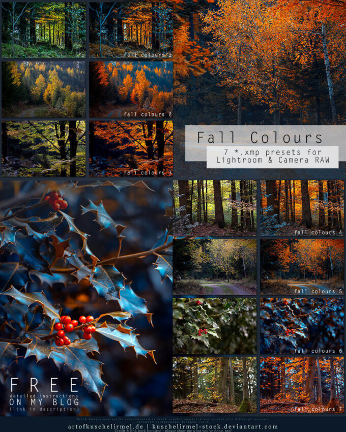 Adobe Lightroom Free Preset .xmp .lrtemplate 無料 フリー 自然 ネイチャー  Fall Colours - Free Lightroom + CameraRAW Presets