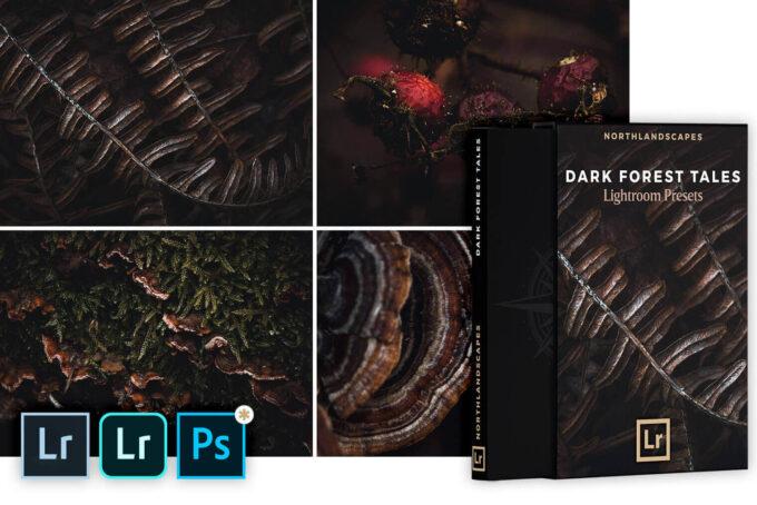 Adobe Lightroom Free Preset .xmp .lrtemplate 無料 フリー 自然 ホラー FREE Lightroom Presets: Dark Forest Tales