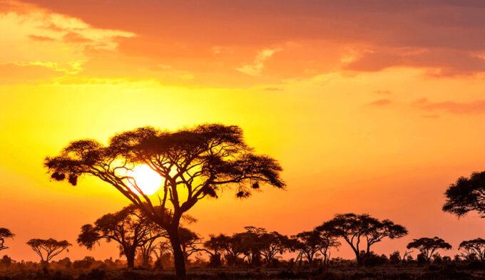 Adobe Lightroom Free Preset Sunrise .xmp .lrtemplate 無料 フリー サンライズ 日の出 光 Brighten