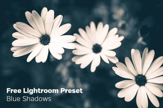 Adobe Lightroom Free Preset .xmp .lrtemplate Retro Vintage 無料 フリー ヴィンテージ レトロ Blue Shadows