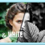 Adobe Lightroom Free Preset Black&White .xmp .lrtemplate 無料 フリー ブラックアンドホワイト モノクロ 白黒