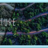 Adobe Lightroom Free Preset Nature .xmp .lrtemplate 無料 フリー 自然 森 草 木 ネイチャー
