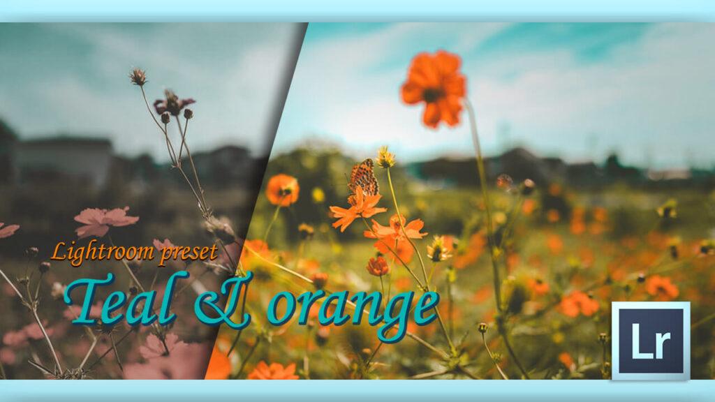 Adobe Lightroom Free Preset Sunrise .xmp .lrtemplate 無料 フリー ティールアンドオレンジ Teal & orange